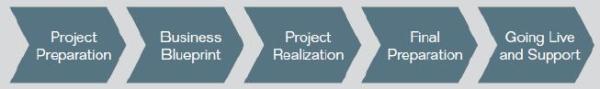 SAP Accelerated Implementation Program2 resized 600