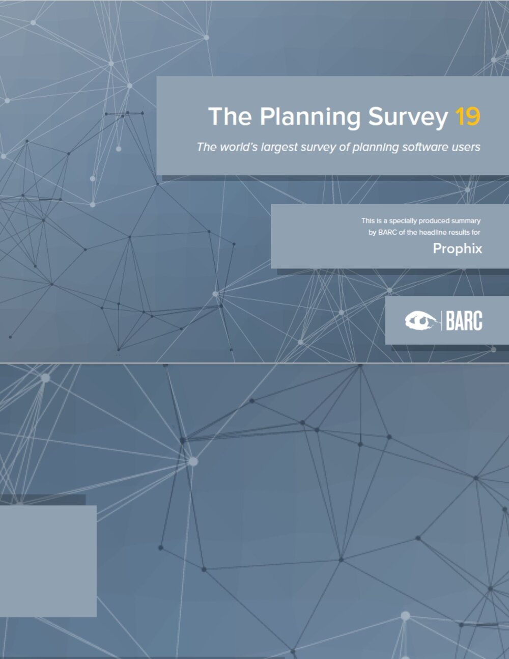 The Planning Survey 19